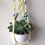 suspension-plante-lunar